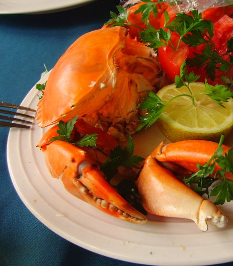 fresh-crab-plate